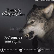 wolf frases - Buscar con Google By: Héctor Alberto