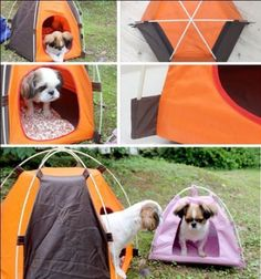 Foldable Dogs Cats Tent House Pets Fashion Bed Outdoor C&ing Home travel house & New Arrival Pet Outdoor Tent Portable Cat Dog House Folding Dog ...