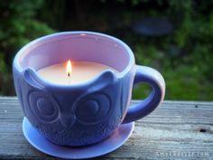 DIY Citronella & Clove Anti-Mosquito Candle