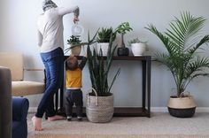 Houseplants for Beginners: How to Keep Houseplants Alive