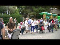 Alicante_DIA SED 2014 - YouTube