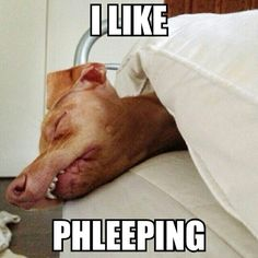 Phteven while sleeping