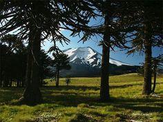 Volcán Lonquimay, región de la Araucanía