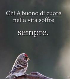 Non dire gatto...: Chi è buono... Bff Quotes, Zodiac Quotes, Quote Life, Italian Quotes, For You Song, Osho, Sentences, Life Lessons, Positive Quotes