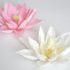 Learn how to create these easy crepe paper water lilies. Bonus lotus instructions too!