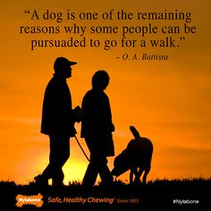 Share if you love taking your #dog on walks! #dogs #pets    via @Nylabone Products Products Products Products