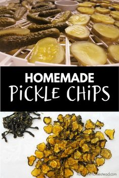 Dehydrated pickle chips are a unique snack and can be made from your own pickles or store bought. Save money and do it yourself. Raw Dessert Recipes, Raw Food Recipes, Snack Recipes, Health Recipes, Appetizer Recipes, Desserts, Canning Recipes, Jar Recipes, Freezer Recipes