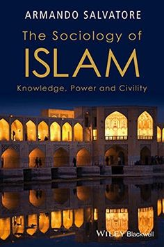 The Sociology of Islam: Knowledge, Power and Civility by ... http://www.amazon.com/dp/1119109973/ref=cm_sw_r_pi_dp_KJeqxb0T36BR2