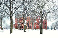 Campus of Tufts University, Medford, USA