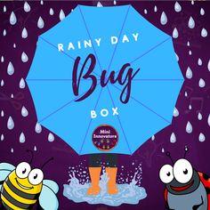 Rainy Day Bug Box