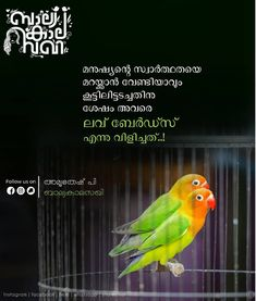 Good Morning Wishes, Good Morning Images, Good Morning Quotes, Love Quotes In Malayalam, Knowledge Quotes, Soul Quotes, All Friends, Read More, Life Lessons