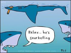 Scuba humor .... actually laughed at this .... only me .