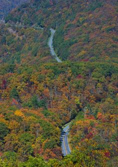 The Road Below (Skyline Drive, Shenandoah National Park, as seen from the summit of the Frazier Discovery Trail).