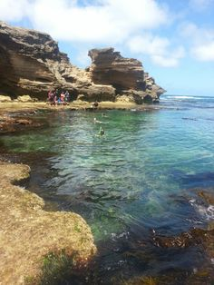 snorkeling in Warnambool