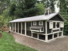 6x10 henhouse with 10x30 run chicken coop