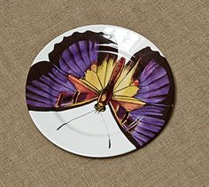Bone China Butterfly Plates | Re-found Objects