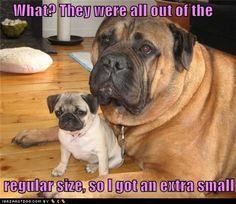 Haha Extra small