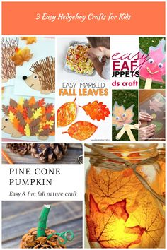Three fun and easy ways to use our free hedgehog template to create cute hedgehog crafts for kids. Leaf hedgehog, fork painting and ruler lines fall crafts. fall crafts 3 Easy Hedgehog Crafts for Kids Nature Crafts, Fall Crafts, Crafts For Kids, Hedgehog Craft, Cute Hedgehog, Autumn Nature, Autumn Leaves, Rose Gold Hair, Ruler