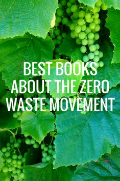 The zero waste movement can be a complex topic will lots of ways to get involved! These five book recommendations will get you started, turning page after page without even noticing!