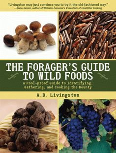 Forager's Guide to Wild Foods - more here: http://www.pinterest.com/confetticrafts/wild-native-edible-florida-plants-weeds/ - http://islandgathering.org/islandgathering/Bushcraft.html http://www.eatweeds.co.uk/ http://www.ediblewildfood.com/foraging-for-food.aspx