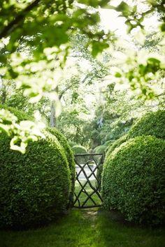 Inside the home and garden of designer Miranda Brooks: Miranda's love of gardens…