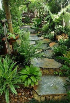 26 Perfect Side Yard Garden Design Ideas And Remodel. If you are looking for Side Yard Garden Design Ideas And Remodel, You come to the right place. Here are the Side Yard Garden Design Ideas And Rem. Amazing Gardens, Beautiful Gardens, Beautiful Flowers, Side Yard Landscaping, Landscaping Ideas, Backyard Ideas, Tropical Backyard Landscaping, Backyard Projects, Shade Landscaping