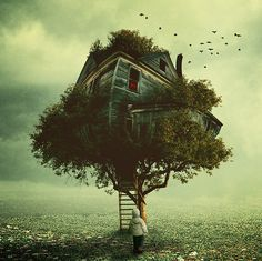 Image discovered by BexJo. Find images and videos about nature, amazing and house on We Heart It - the app to get lost in what you love. Fantasy Pictures, Pictures Images, Photos, Fantasy World, Fantasy Art, Dark Fantasy, Cool Tree Houses, Water Art, Weird Creatures
