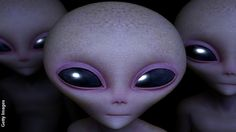A remarkable new survey on the possibility of extraterrestrial life has produced some thought-provoking results.