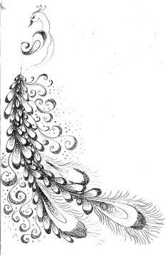 peacock 1 doodle by abbye dahl, via Flickr