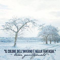 """""""Il colore dell'inverno è nella fantasia!"""" - Terri Guillemets  #cit #quote #inverno #winter #citazione #fantasia"""
