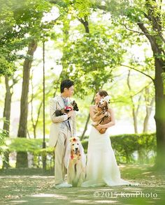 Shantiでの前撮り撮影 hair make produce:Koike http://shanti.alicesalon.com  #ig_wedding #ウェディング #結婚式 #写真 #photo #家族 #igfamily #ig_family #weddingphotography #weddingphotographer #わんこ #dog #igdog #犬 #ゴールデンレトリバー  #プレ花嫁 #結婚準備 #結婚式準備 #ウェディングドレス