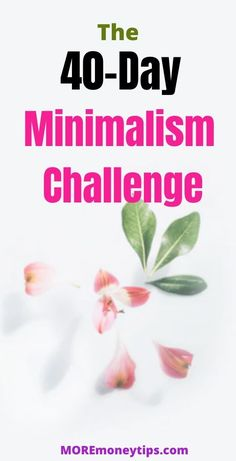 Minimalism Challenge - More Money Tips