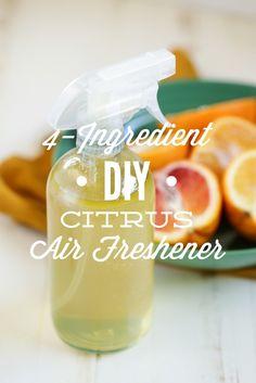 4-Ingredient DIY Citrus Air Freshener