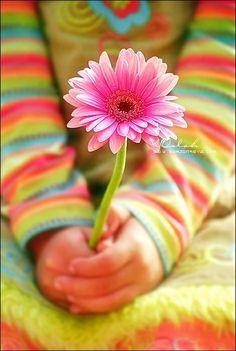 .jugando con las flores