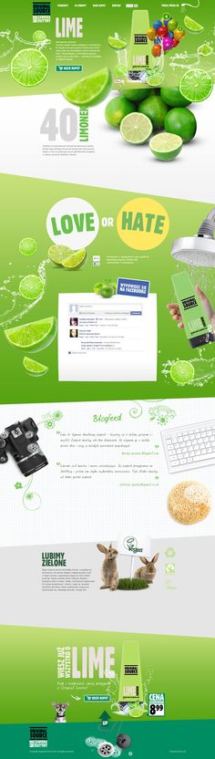 Cool Web Design on the Internet, LIME. #webdesign
