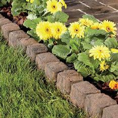 brick edging set in a soldier course decorative landscape edging