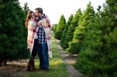 Christmas card pictures at a Christmas Tree Farm