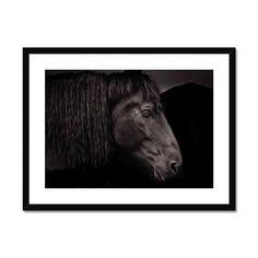 Old Black – Trigger Image Buy Prints, Prints For Sale, Framed Prints, Canvas Prints, Us Images, Fine Art Paper, Moose Art, Satin Finish, Clean Lines
