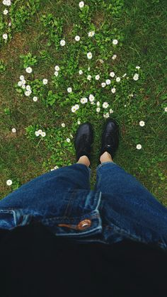 Little daisies 🌼🌼