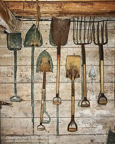 A rustic charmer!  A barn workroom with rusty old tools hanging on a whitewashed wood wall. Each tool has a place painted on the wall for storage.  Now available in my online Etsy shop.  Click on the link below for details and to order. Ships worldwide!  Farm Tools in Barn  Rustic Fine Art Wall by AnneFreemanImages, $15.00  ~ Anne Freeman Images ~ Prints to Make you Smile ~