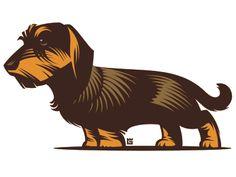 Illustration dog by Gal Yuri Dachshund Art, Wire Haired Dachshund, Dog Illustration, Illustrations, Logo Luxury, Otter, Dog Vector, Vector Graphics, Dog Socks