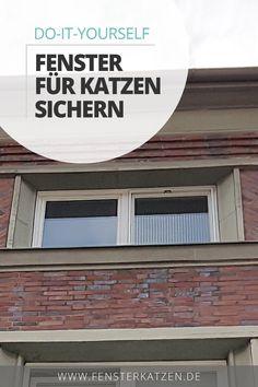 Wie du eine kostengünstige und langlebige Fenstersicherung für Katzen ganz leicht selber bauen kannst, erfährst du in dieser einfachen Schritt-für-Schritt Anleitung. Und dass, ohne bohren zu müssen, ohne das Fenster deiner Mietwohnung zu beschädigen und ohne über handwerkliches Talent zu verfügen. DIY | Fenster sichern Katze | Fenster katzensicher machen | Katzennetz Fenster ohne bohren | Spannrahmen Fenster Katzen | Katzengitter | Fensternetz Katze #diy #katzendiy #diykatzen #selbermachen Garage Doors, Outdoor Decor, Blog, Diy, Home Decor, Air Fresh, Step By Step Instructions, Make Your Own, Decoration Home