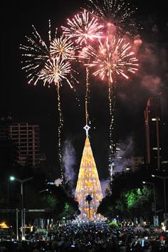 Christmas decorations: A Christmas tree with lights and fireworks in Mexico City