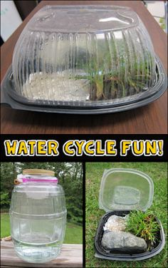 Create a mini water cycle using a rotisserie chicken container and demonstrate cloud formation in a jar.Hands-on Water Cycle Fun! Create a mini water cycle using a rotisserie chicken container and demonstrate cloud formation in a jar. Middle School Science, Elementary Science, Science Classroom, Teaching Science, Science Education, Science For Kids, Science Ideas, Physical Science, Higher Education
