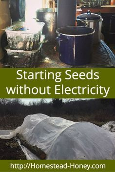 You don't have to spend a lot of money on heat lamps and grow lights. Here are some easy ways to start seeds without electricity, and get a jump start on your spring garden. | Homestead Honey