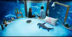 Shark Aquarium Underwater Room Listed On Airbnb For Rent Lets You Sleep With The Sharks -  #adventure #shark