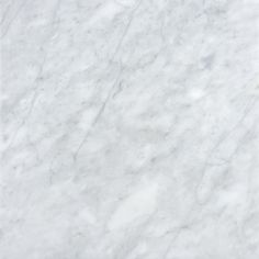 White Marble Flooring anatolia tile 4-pack polished white venatino marble floor and wall