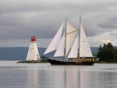 Let us be your guide as you discover Cape Breton Island. Cabot Discovery Tours offers small group tours from Baddeck, NS and cruise excursions from the Port of Sydney. Enchanted Island, Cruise Excursions, Atlantic Canada, Canadian History, Cape Breton, Prince Edward Island, New Brunswick, Tall Ships, Newfoundland