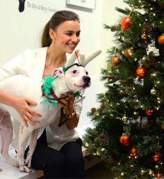 Supermodel Irina Shayk Stops by the ASPCA Adoption Center!