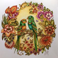 WEBSTA @ royalcolouring - ❤️I'm so in love with my birdcouple 🍀in the Magical jungle from 😍i used Faber Castell Polychromos , Steadtler fineliners, Bruynzeel and Lamy pencils. Jungle Coloring Pages, Coloring Book Art, Mandala Coloring, Colouring Pages, Adult Coloring, Secret Garden Coloring Book, Magical Jungle Johanna Basford, Joanna Basford, Enchanted Forest Coloring Book